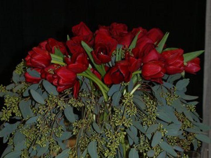 Tmx 1303401049732 DSC07859 Fredericksburg wedding rental