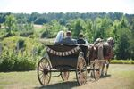 Boyne Valley Equine Tours & Services, LLC image
