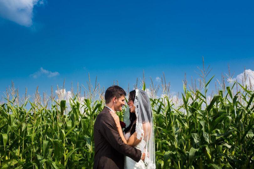 dibuono wedding 5 1024x682 51 554375 158070203974331