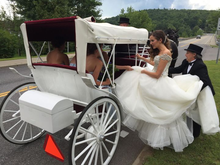 74c3ea8e279582ee Bride in Horse carriage