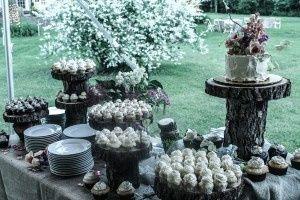 Tmx 1390968648526 Cupcake Stone Ridge, NY wedding catering