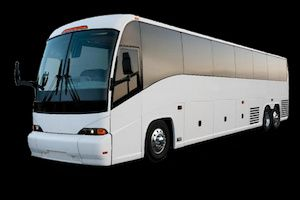 Executive 55-passenger buses