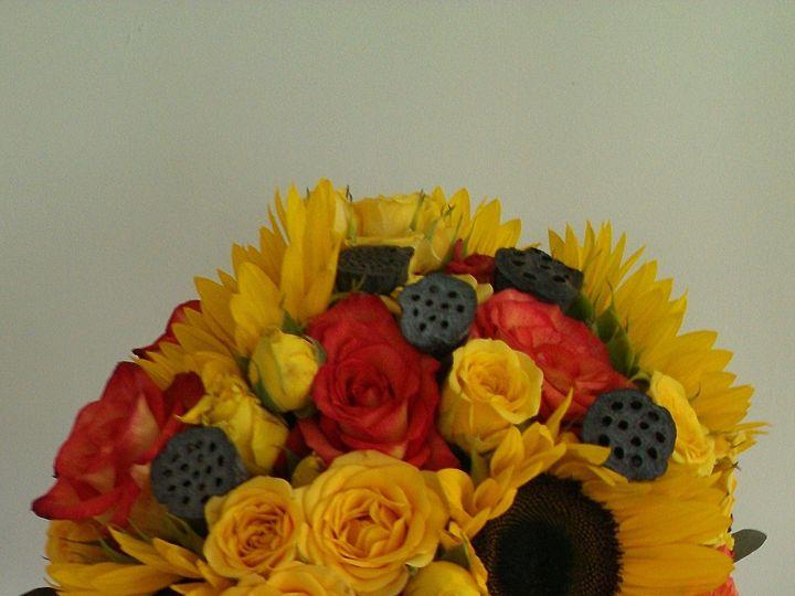 Tmx Imag1133 51 53475 157428700294631 Gilbertsville, PA wedding florist