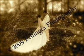Joseph Pellingra Photography