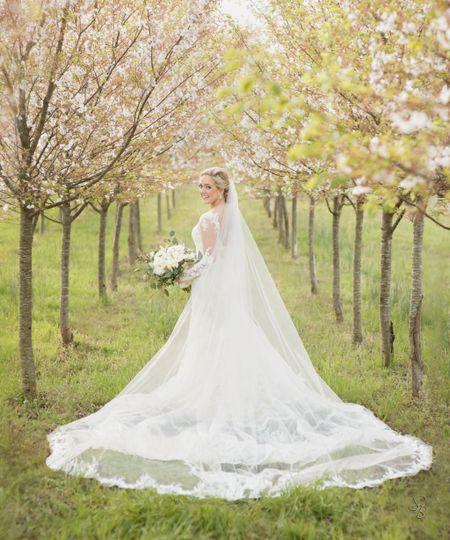 f0a5e6294faa Sposa Bella Photography sposa bella cherrytree bride 51 49475 1556136496
