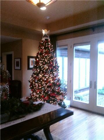 Christmas Tree in Reception Area at a Home Reception