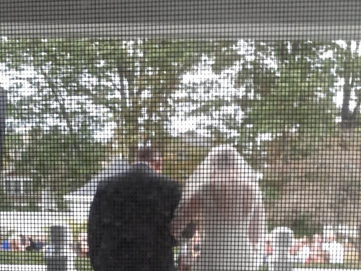 Tmx On Their Way 51 684575 1571421852 Hampton, NH wedding venue