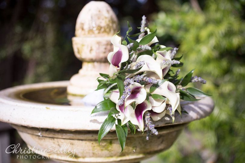 Flowers by the fountain