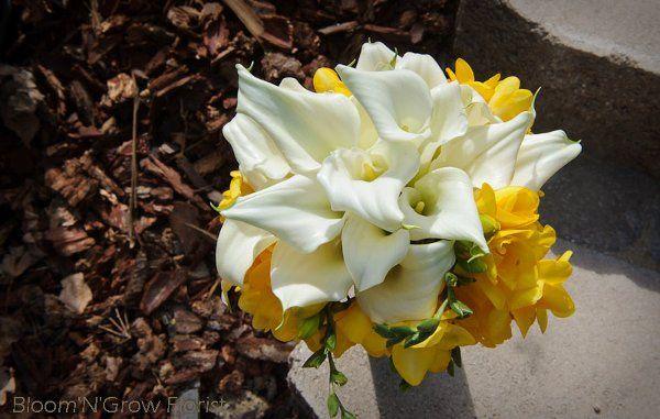 Tmx 1318908773866 BloomNGrow1 Atascadero, California wedding florist
