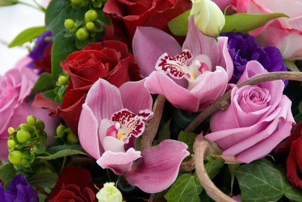 Tmx 1334268666085 Pauliepic Atascadero, California wedding florist