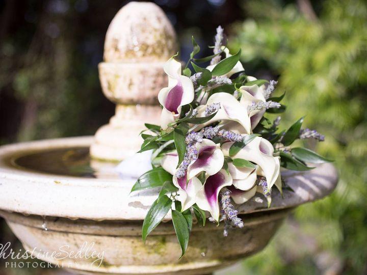 Tmx 1469192738027 13268460101540374807065782269077632432195151o Atascadero, California wedding florist