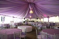 Purple reception motif