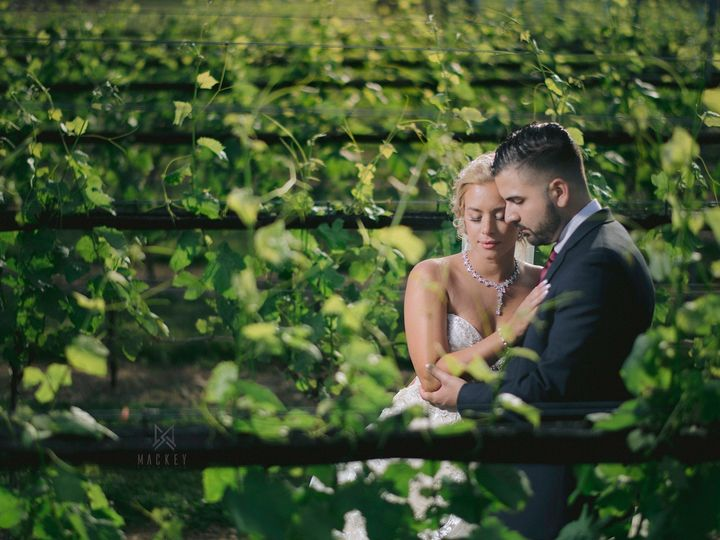 Tmx Feliciano In The Vines 51 619575 1561337031 Stroudsburg, PA wedding photography
