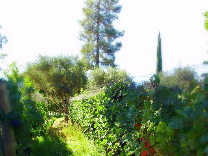 Tmx 1391975099964 Field Westlake Village, California wedding venue