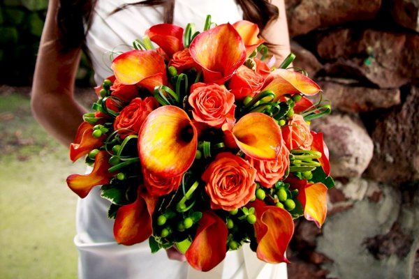 Tmx 1323223544577 30194710100284751402791900873150720671684665504n Stratford, New York wedding florist