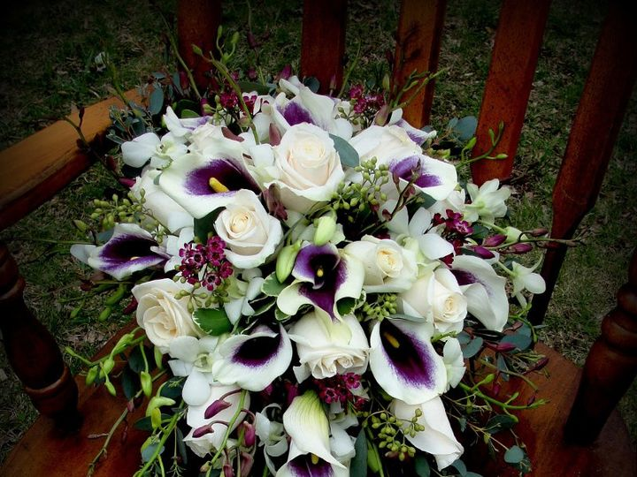 Tmx 1361821620831 DSC04037edpicasso Stratford, New York wedding florist