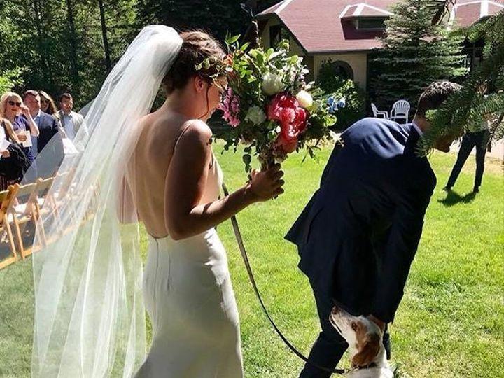 Tmx 34116621 469716653477385 8107223041508900864 N 51 1896675 157547042539152 Cleveland, OH wedding planner