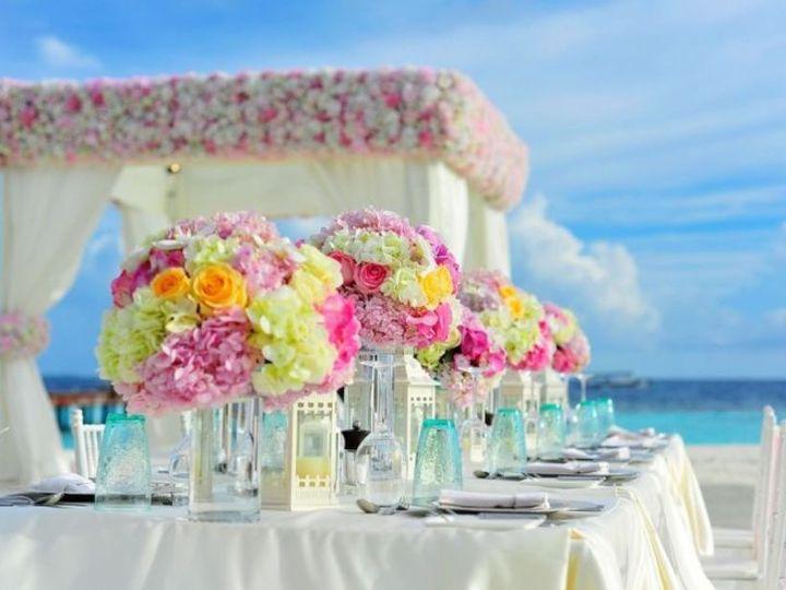 Tmx 1526027512 5a94a7a1ebc6c12f 1526027511 72492811b9d2aa61 1526027506850 1 1 Osprey wedding planner
