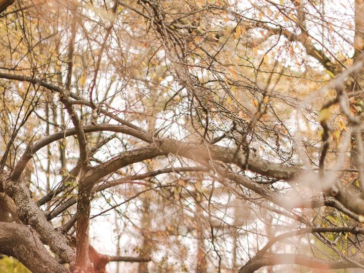 Tmx 427a3431 51 1021775 157595721668544 Reading, PA wedding photography
