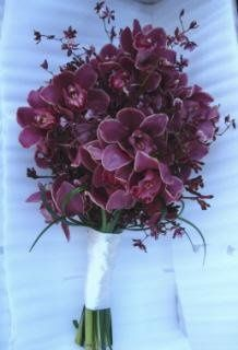 Gorgeous exotic bouquet of cymbidium orchids, oncydium orchids, kangaroo paws with lily grass loops...