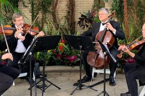 Landolfi String Quartet and Ensemble