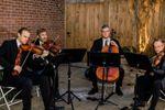 Landolfi String Quartet and Ensemble image