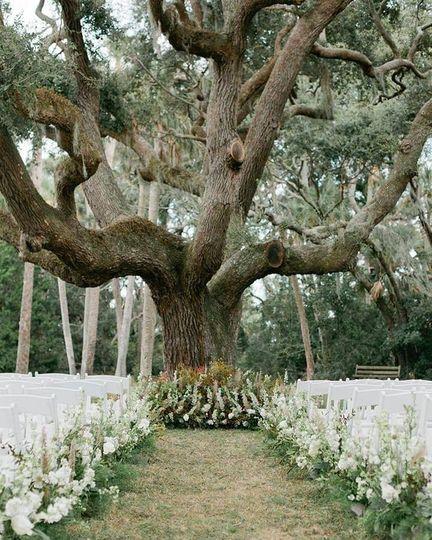 Wedding Tree Setup