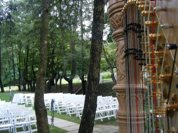 Harp ready for the ceremony