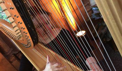 Melissa Tardiff Dvorak, Harpist