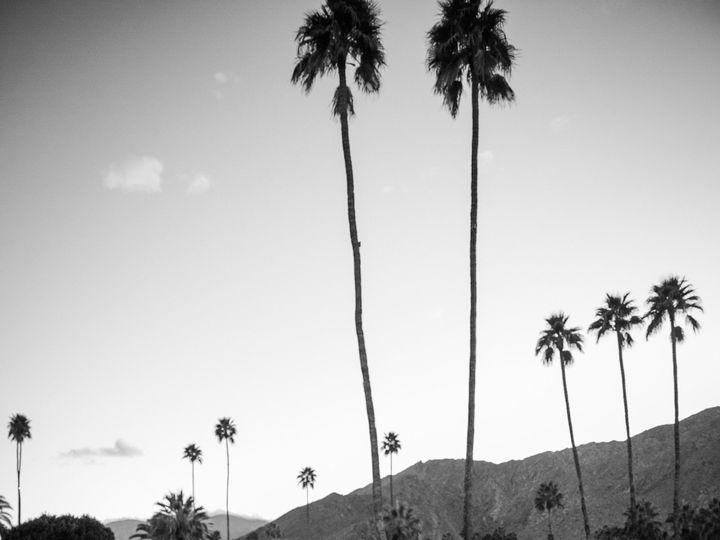 Tmx 1438720586564 Hamilton  Palm Springs 24 Of 27 Palm Springs wedding band