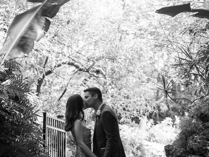 Tmx Img 9522 51 1029975 162678570930781 Saint Petersburg, FL wedding photography