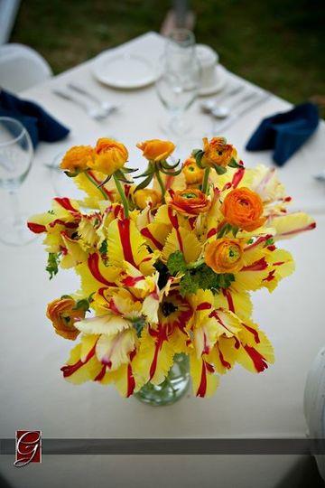Beautiful Simplicity of Parrot Tulips & Ranunculus