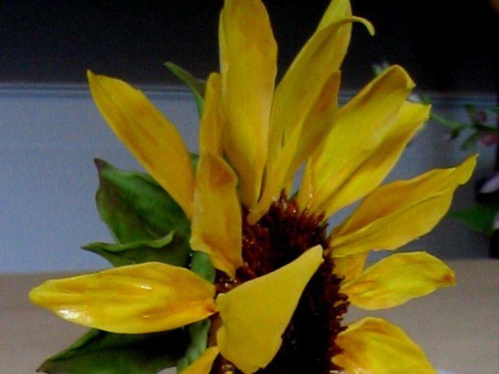 Tmx 1378427439174 Sunflowercakedetail2 Manchester, Massachusetts wedding cake