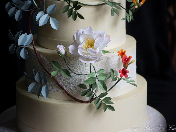 Tmx 1477936413539 Dsc2216 Manchester, Massachusetts wedding cake