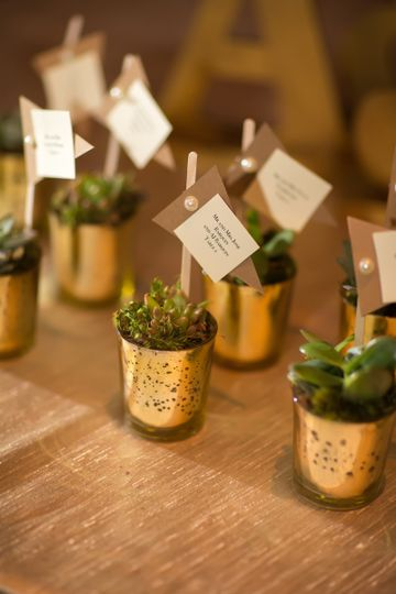 Succulents as escort table and favors