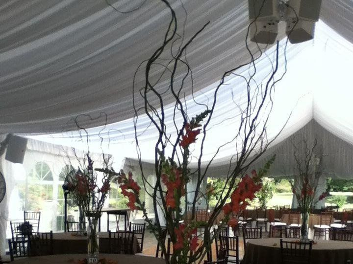 Tmx 1349369127419 40141610151120116238434720185133n Swedesboro wedding florist