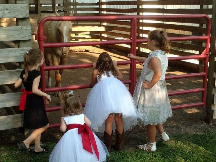 Tmx Xxx 51 953185 158285229576076 Pleasant Hill, MO wedding venue