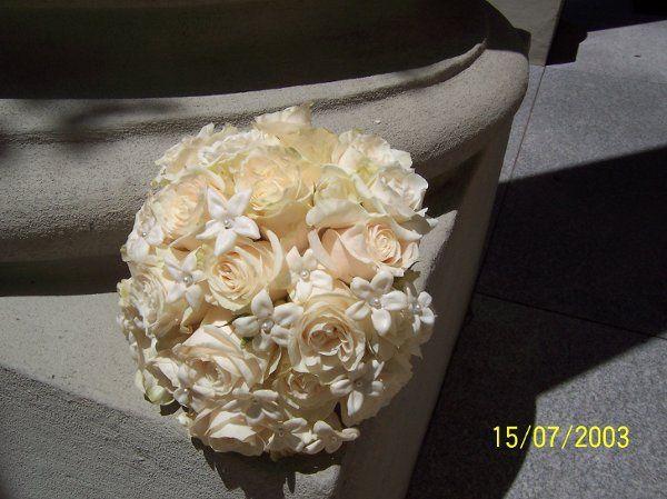 White round rose