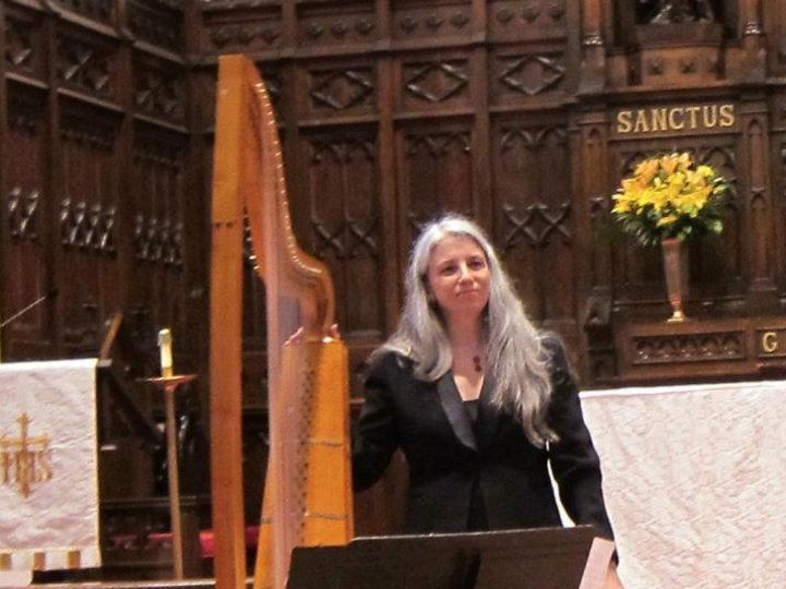 Tmx Christa And Harp Gemsny 51 1060285 1556036768 Stony Point, NY wedding ceremonymusic