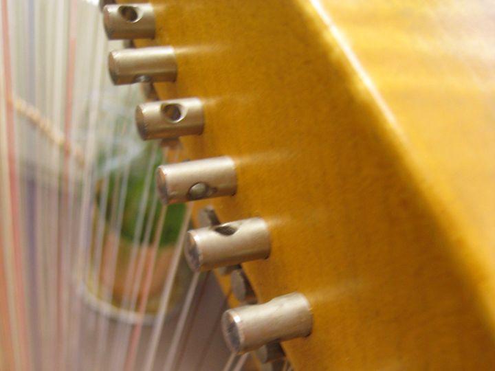 Tmx Dma Recital Harp 51 1060285 1556282557 Stony Point, NY wedding ceremonymusic