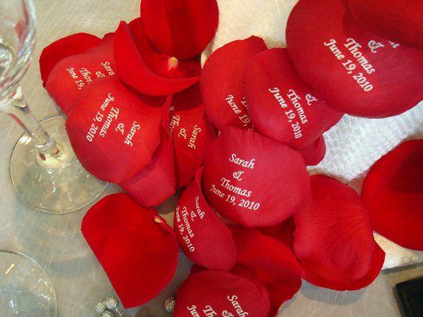 Tmx 1320165839909 DSC01286 Babylon wedding florist