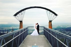 Tonic Design Studio Photography