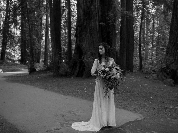 Tmx Alytovar 43 51 1395285 158144990456137 Napa, CA wedding photography