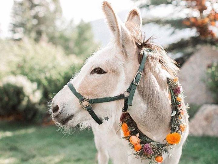 Tmx Dirty 51 1900385 157557868680734 Gunnison, CO wedding rental