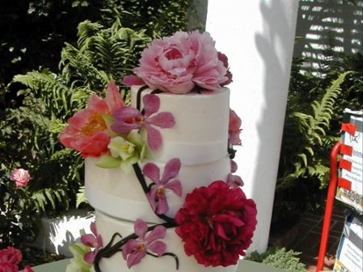 Tmx 1257957850417 OffsetRounds San Diego wedding cake