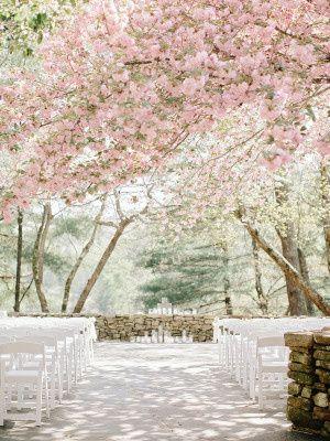 cherry blossom wedding 300x400