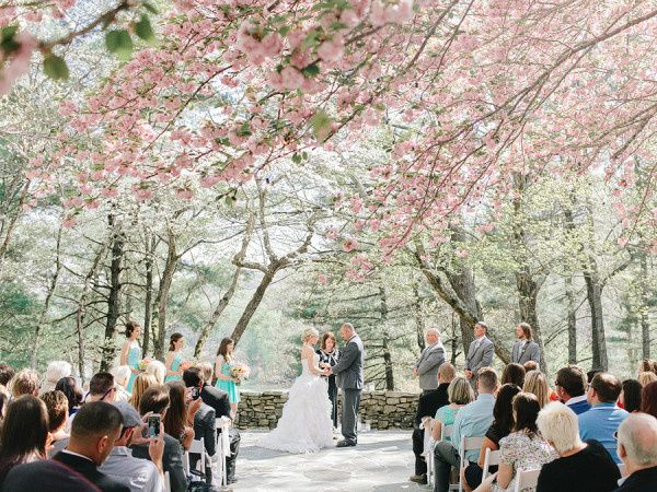 Tmx 1456510930848 Ceremony Under Cherry Blossoms 600x450 Jasper wedding venue