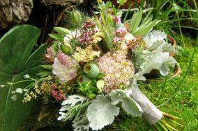 Flowers by Olga