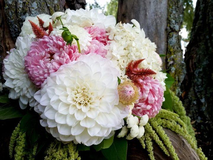 Tmx Flowersbyolga7 51 1039385 East Berkshire, VT wedding florist