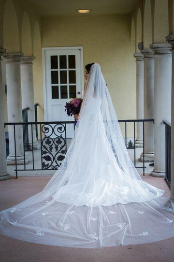 Dramatic veil